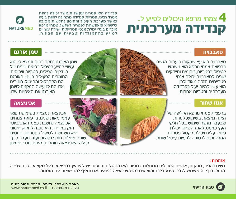 צמחי מרפא לקנדידה מערכתית