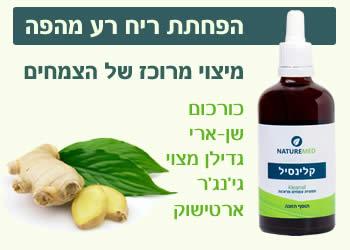 צמחי מרפא להפחתת ריח רע מהפה