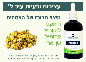 צמחי מרפא לעיכול תקין