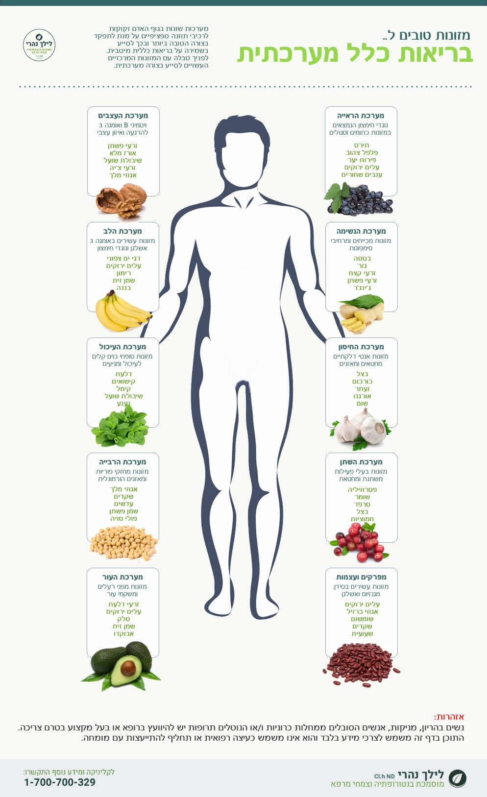 בריאות מערכתית