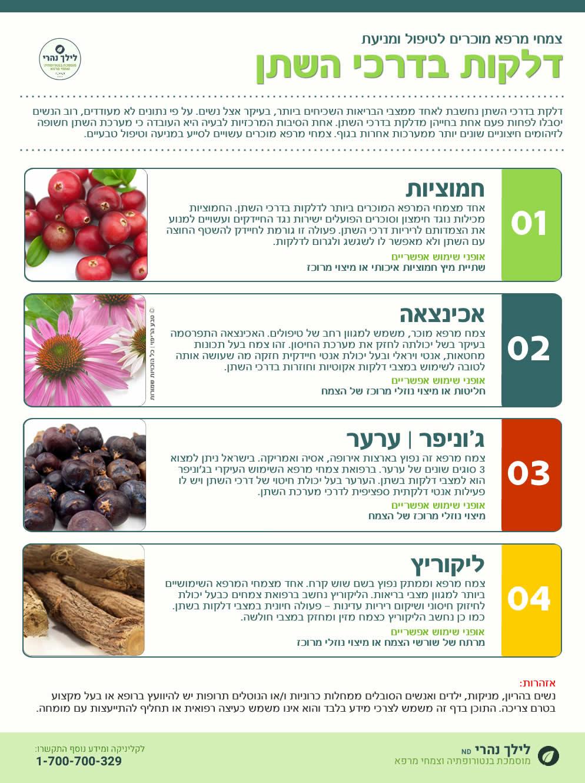 צמחי מרפא לטיפול בדלקות שתן