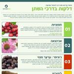 צמחי מרפא לדלקות שתן