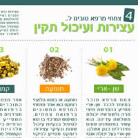 צמחי מרפא לעצירות ובעיות עיכול