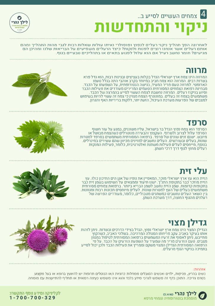 צמחים וניקוי