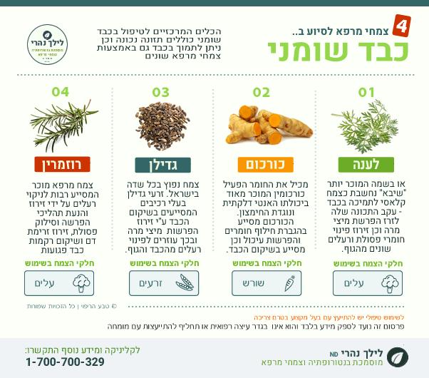 כבד שומני - צמחי מרפא