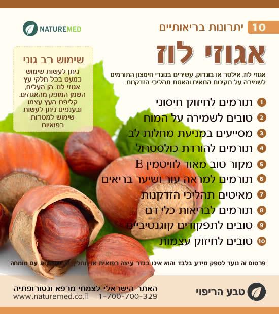 אגוזי לוז - 10 יתרונות בריאותיים