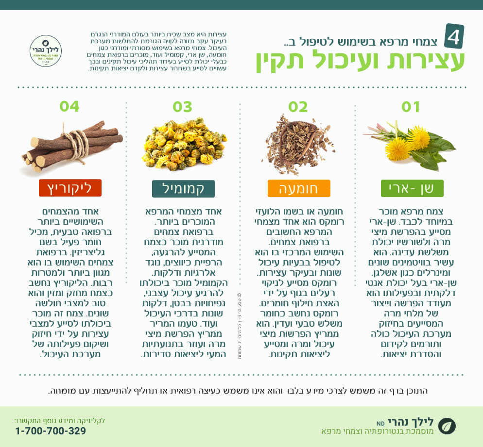 צמחי מרפא לעצירות ועיכול תקין