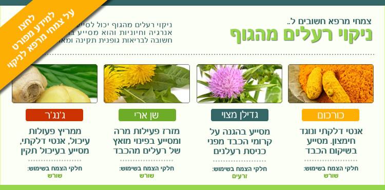 צמחי מרפא לניקוי רעלים מהגוף