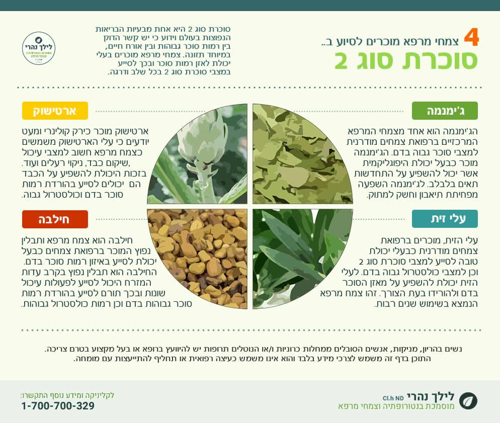 צמחי מרפא לסוכרת סוג 2