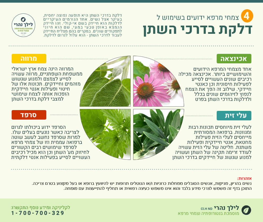 צמחים ודלקות בדרכי השתן