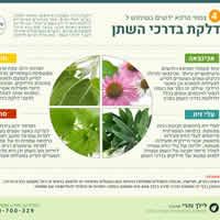 צמחים ודלקות שתן