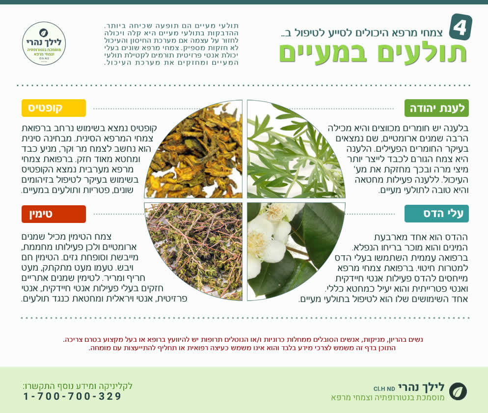 צמחי מרפא לטיפול בתולעי מעיים