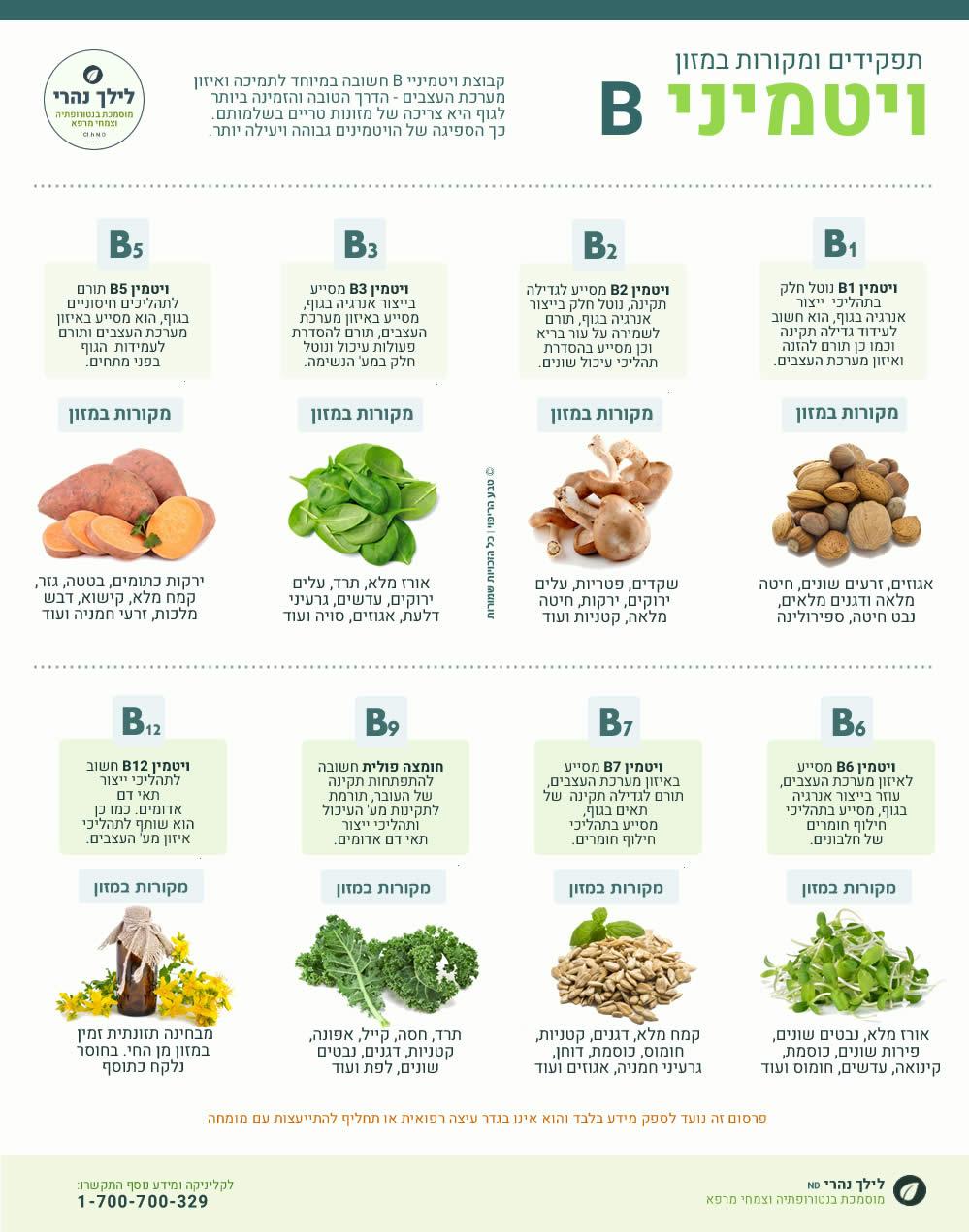 ויטמיני B - חשיבות - תפקידים ומקורות במזון